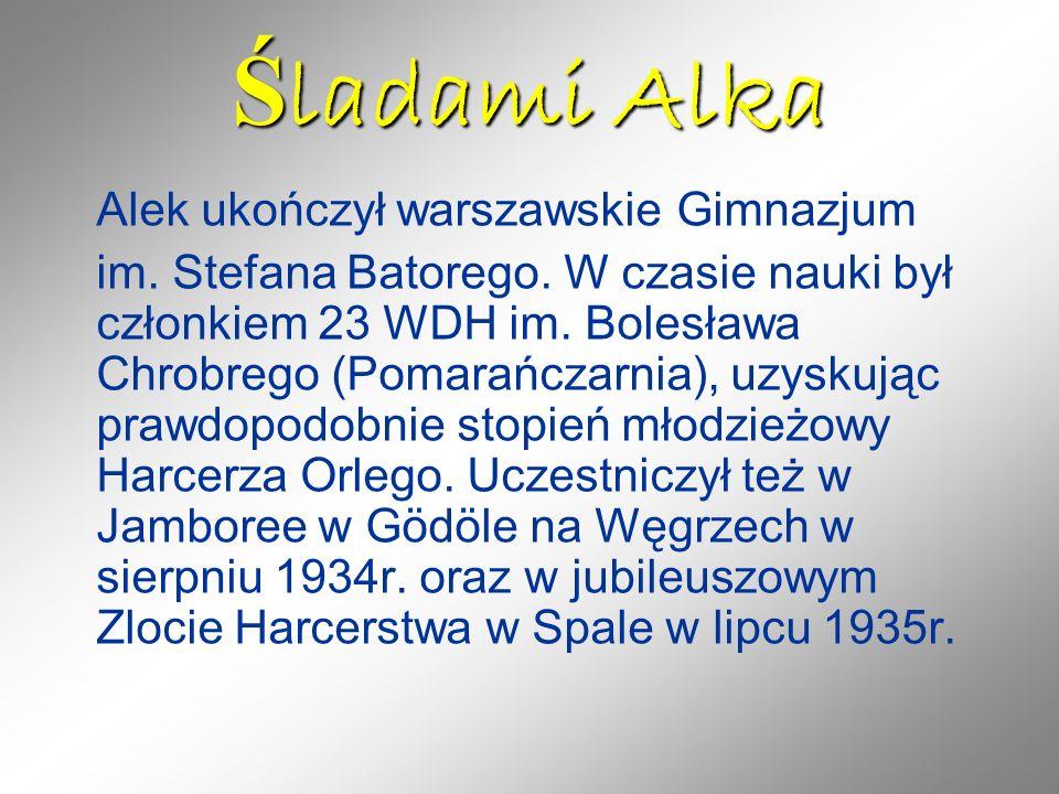 Ś ladami Alka Alek ukończył warszawskie Gimnazjum im. Stefana Batorego. W czasie nauki był członkiem 23 WDH im. Bolesława Chrobrego (Pomarańczarnia),