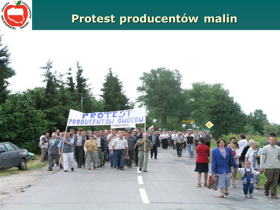 Protest producentów malin