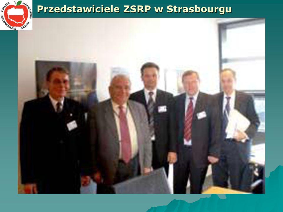 Przedstawiciele ZSRP w Strasbourgu