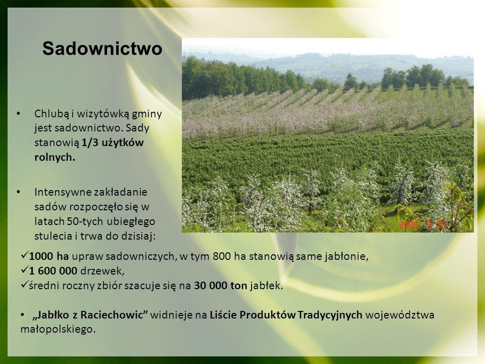 Chlubą i wizytówką gminy jest sadownictwo. Sady stanowią 1/3 użytków rolnych. Intensywne zakładanie sadów rozpoczęło się w latach 50-tych ubiegłego st