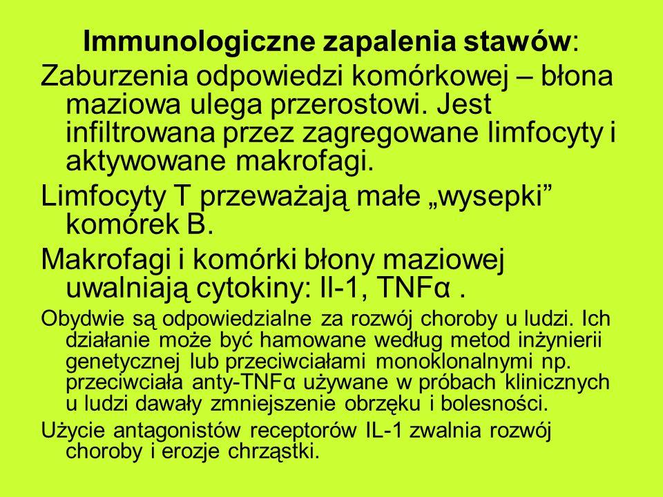 Immunologiczne zapalenia stawów: Zaburzenia odpowiedzi komórkowej – błona maziowa ulega przerostowi.