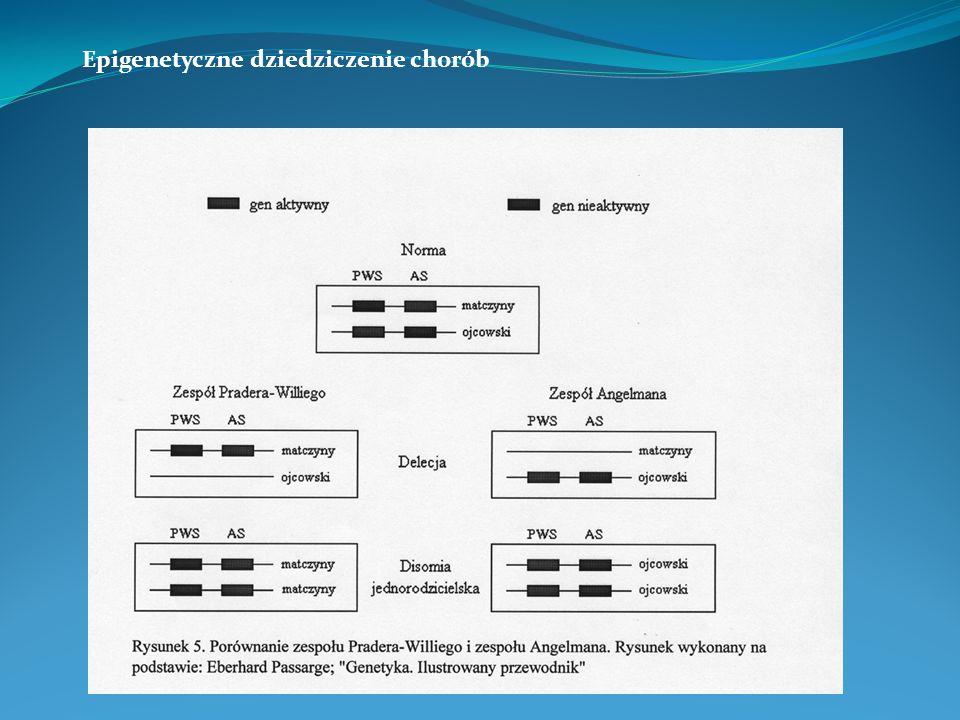 Epigenetyczne dziedziczenie chorób