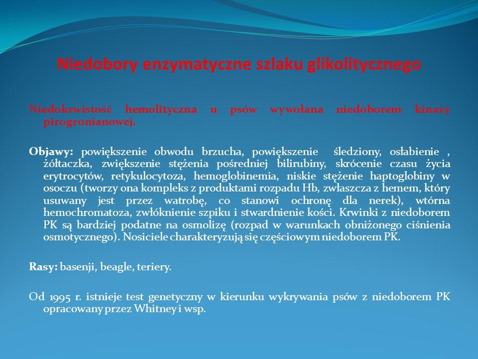 Niedobory enzymatyczne szlaku glikolitycznego Niedokrwistość hemolityczna u psów wywołana niedoborem kinazy pirogronianowej. Objawy: powiększenie obwo