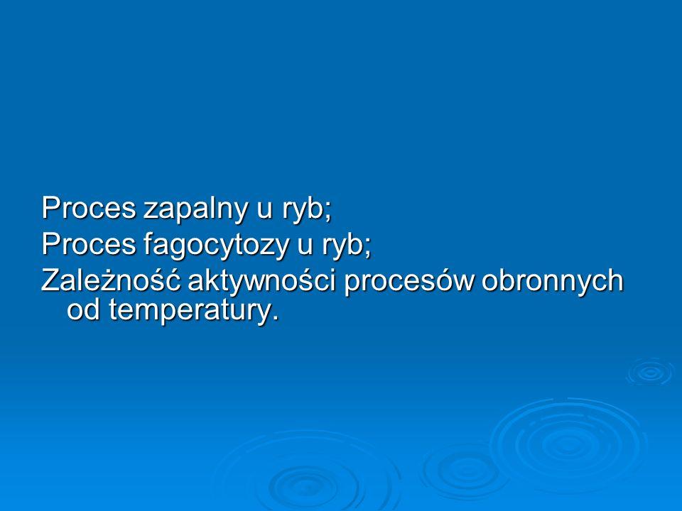 Proces zapalny u ryb; Proces fagocytozy u ryb; Zależność aktywności procesów obronnych od temperatury.