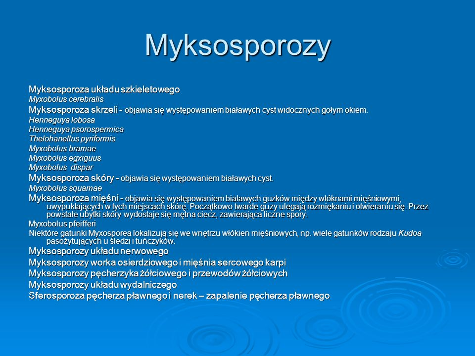 Myksosporozy Myksosporoza układu szkieletowego Myxobolus cerebralis Myksosporoza skrzeli - objawia się występowaniem białawych cyst widocznych gołym o