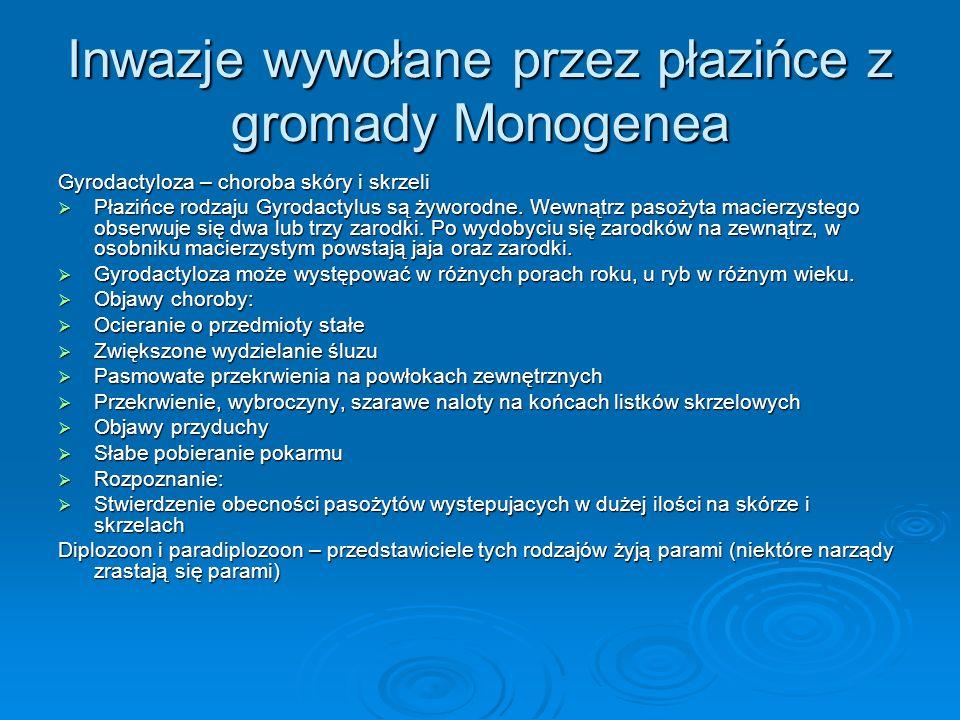 Inwazje wywołane przez płazińce z gromady Monogenea Gyrodactyloza – choroba skóry i skrzeli Płazińce rodzaju Gyrodactylus są żyworodne. Wewnątrz pasoż