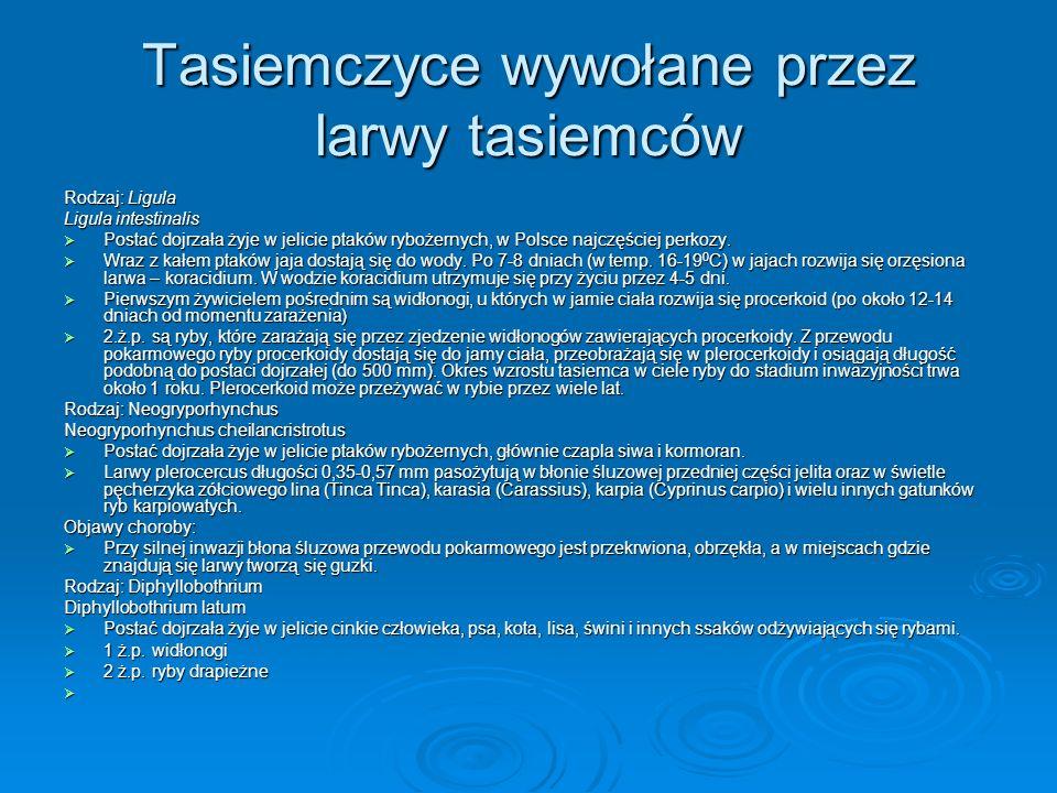 Tasiemczyce wywołane przez larwy tasiemców Rodzaj: Ligula Ligula intestinalis Postać dojrzała żyje w jelicie ptaków rybożernych, w Polsce najczęściej