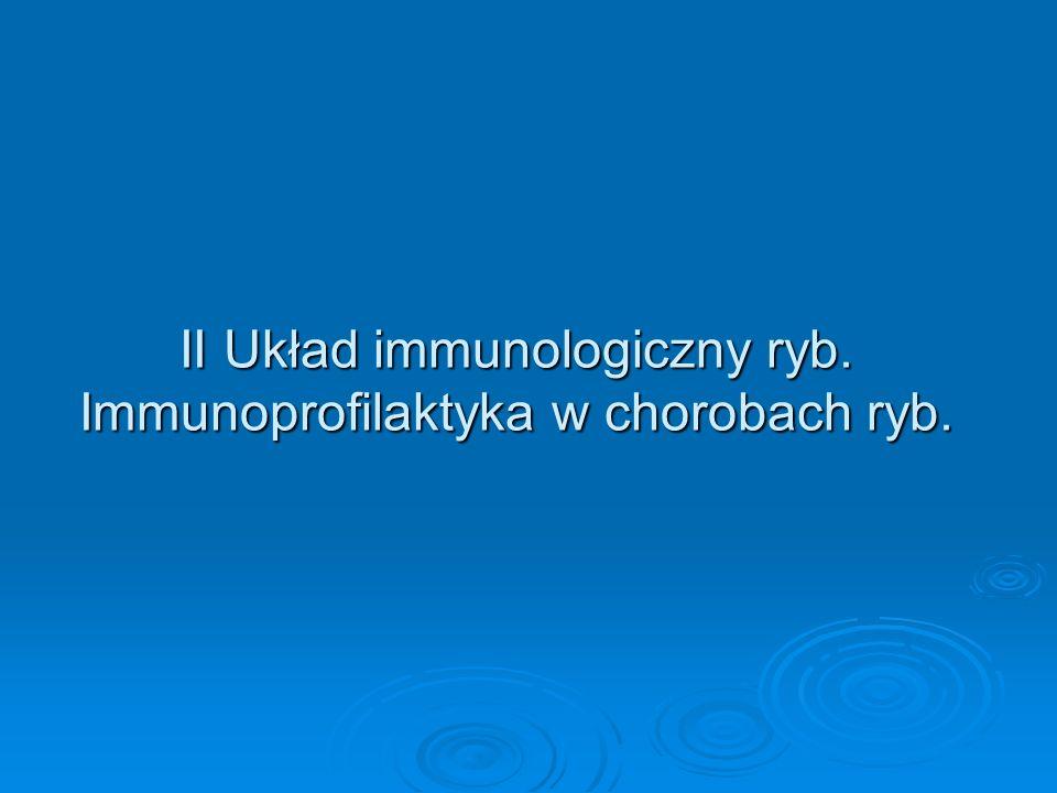 Sphyrion lumpi- rozwój Cykl rozwojowy pasożyta nie jest dobrze poznany.