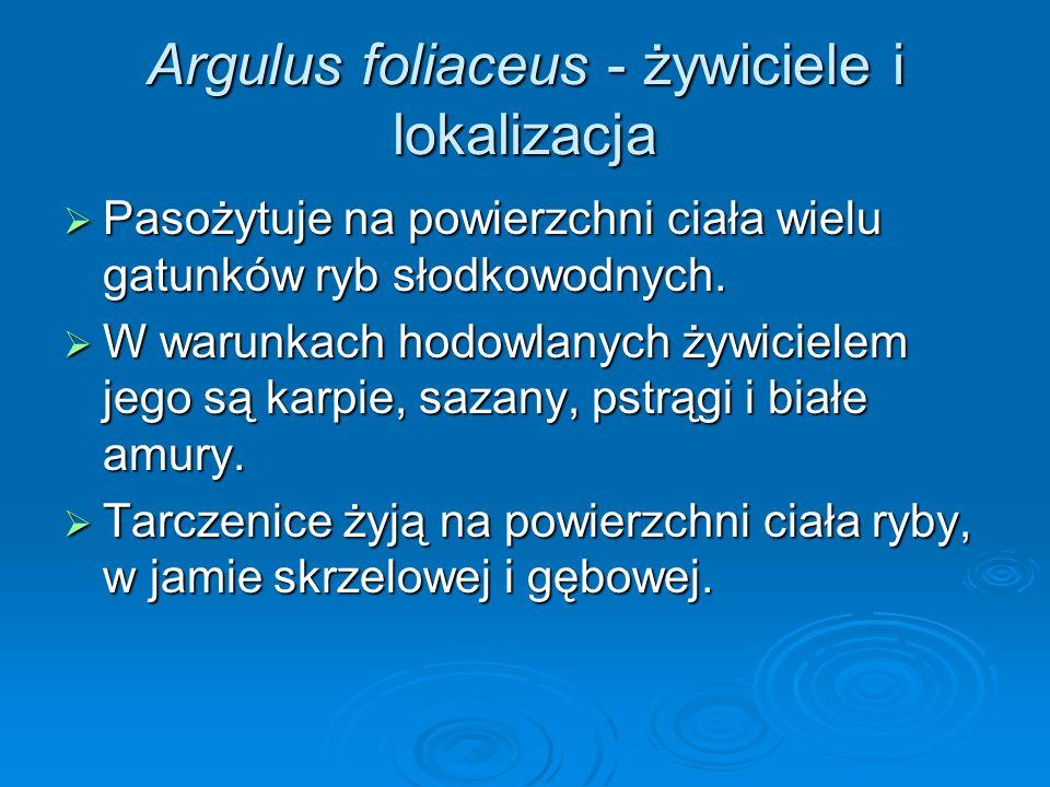 Argulus foliaceus - żywiciele i lokalizacja Pasożytuje na powierzchni ciała wielu gatunków ryb słodkowodnych. Pasożytuje na powierzchni ciała wielu ga