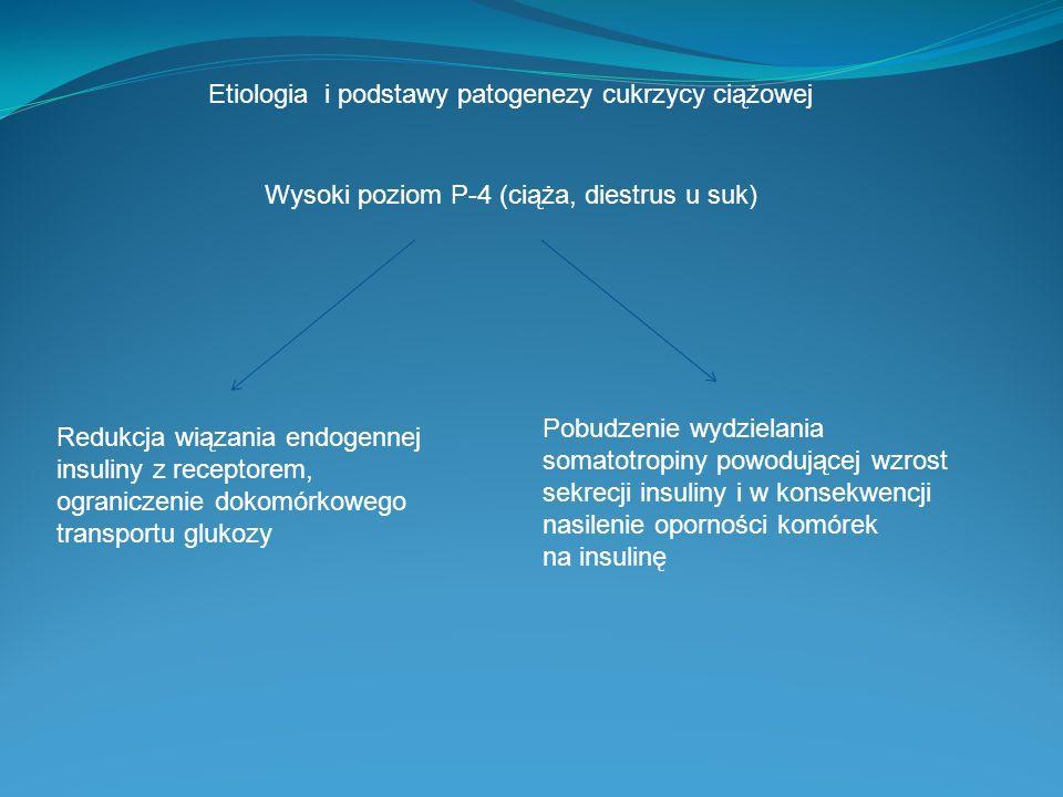 Wysoki poziom P-4 (ciąża, diestrus u suk) Redukcja wiązania endogennej insuliny z receptorem, ograniczenie dokomórkowego transportu glukozy Pobudzenie