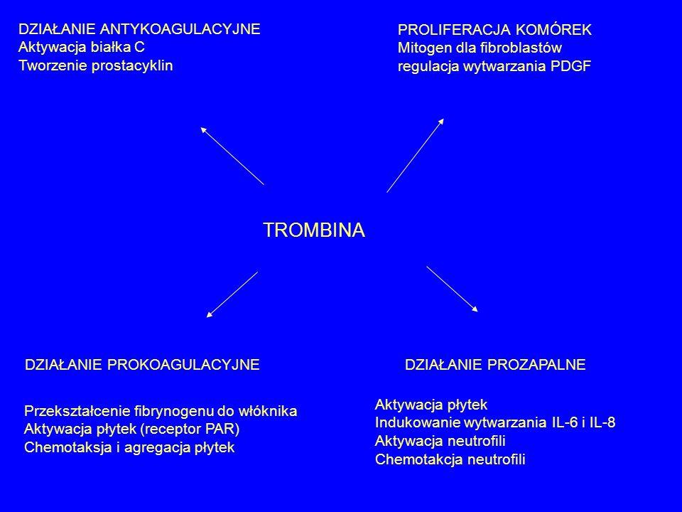 TROMBINA DZIAŁANIE PROKOAGULACYJNE Przekształcenie fibrynogenu do włóknika Aktywacja płytek (receptor PAR) Chemotaksja i agregacja płytek DZIAŁANIE PR