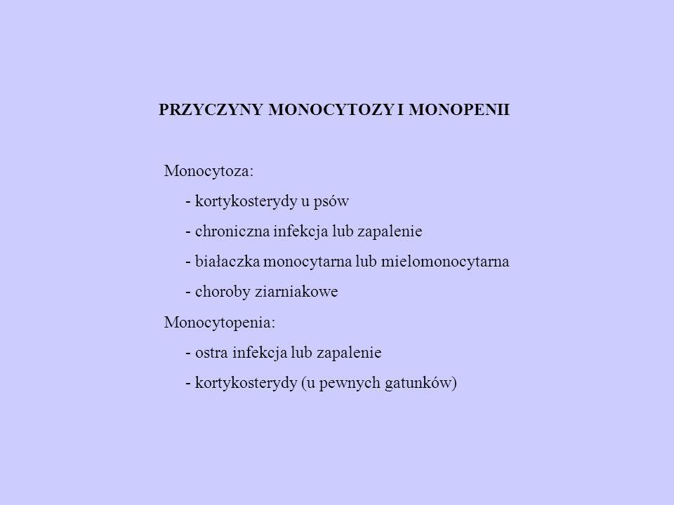 PRZYCZYNY MONOCYTOZY I MONOPENII Monocytoza: - kortykosterydy u psów - chroniczna infekcja lub zapalenie - białaczka monocytarna lub mielomonocytarna - choroby ziarniakowe Monocytopenia: - ostra infekcja lub zapalenie - kortykosterydy (u pewnych gatunków)