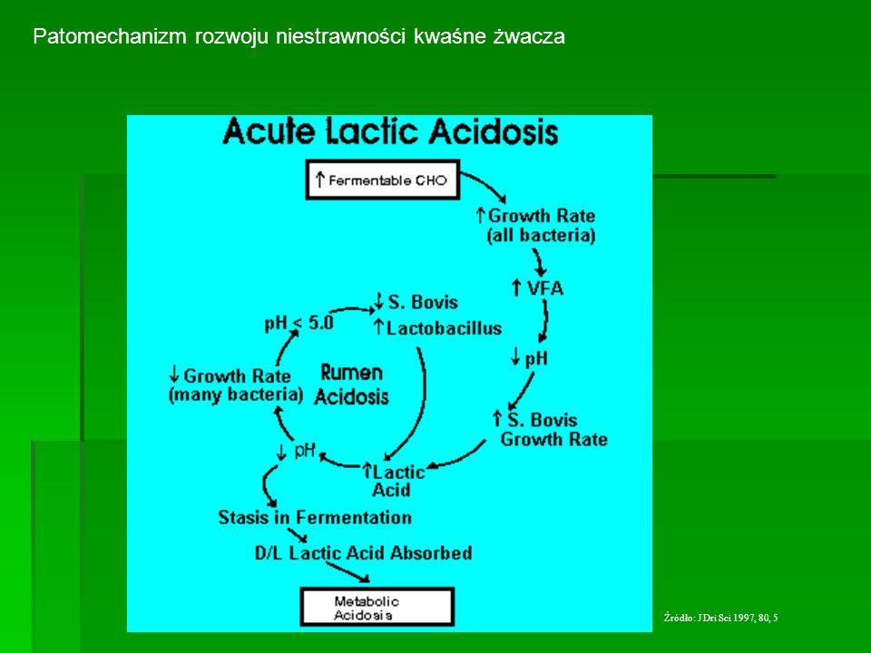 Patomechanizm rozwoju niestrawności kwaśne żwacza Źródło: J Dri Sci 1997, 80, 5