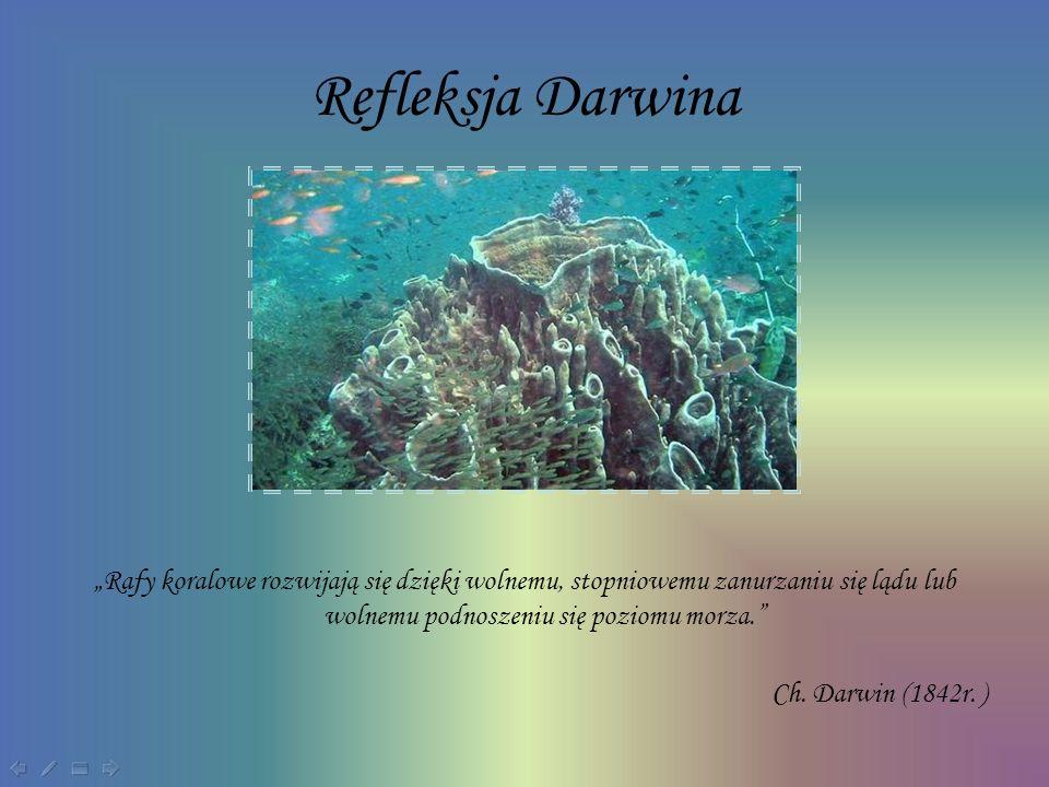 Rafy koralowe rozwijają się dzięki wolnemu, stopniowemu zanurzaniu się lądu lub wolnemu podnoszeniu się poziomu morza. Ch. Darwin (1842r. ) Refleksja