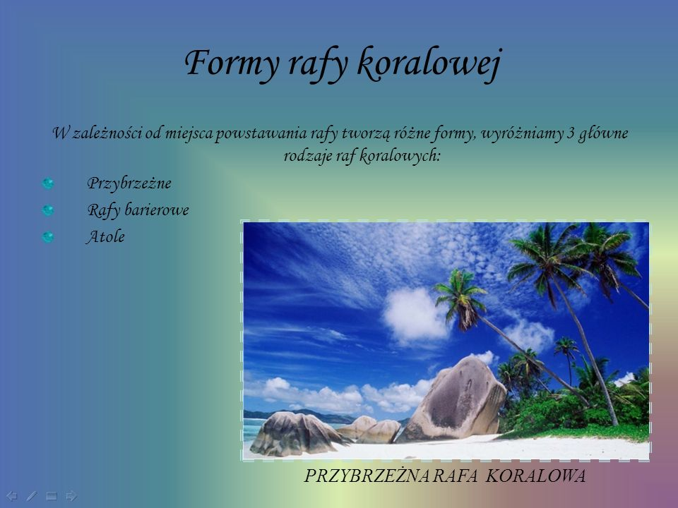 Formy rafy koralowej W zależności od miejsca powstawania rafy tworzą różne formy, wyróżniamy 3 główne rodzaje raf koralowych: Przybrzeżne Rafy bariero