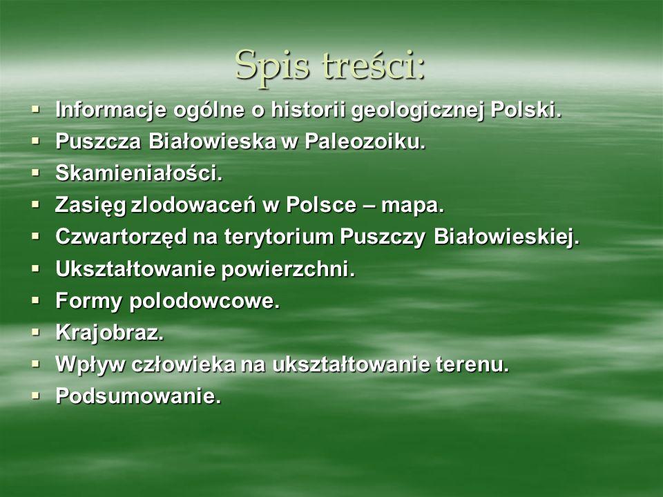 Spis treści: Informacje ogólne o historii geologicznej Polski. Informacje ogólne o historii geologicznej Polski. Puszcza Białowieska w Paleozoiku. Pus
