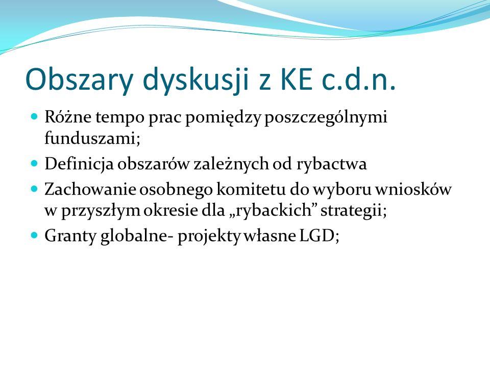 Obszary dyskusji z KE c.d.n.