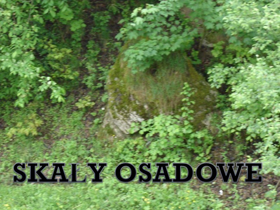 Pami ą tkowa tablica z nazwiskami ż o ł nierzy niemieckich mieszkaj ą cych w Studnicy a poleg ł ych w czasie I wojny ś wiatowej.