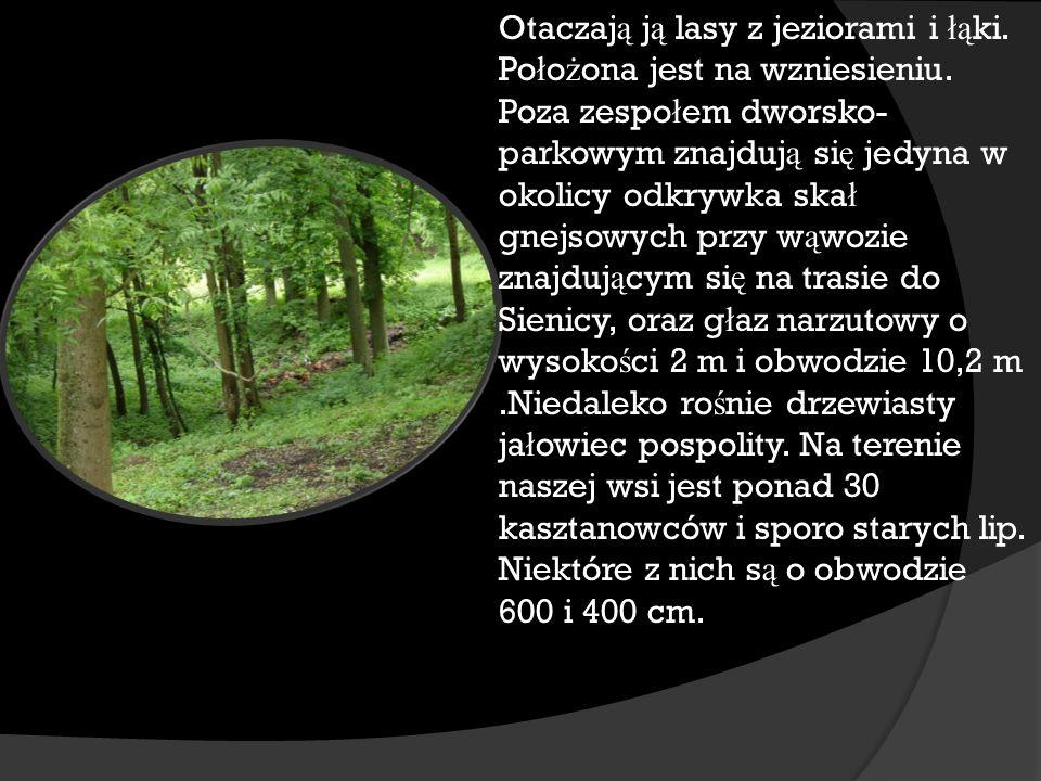 Otaczaj ą j ą lasy z jeziorami i łą ki.Po ł o ż ona jest na wzniesieniu.