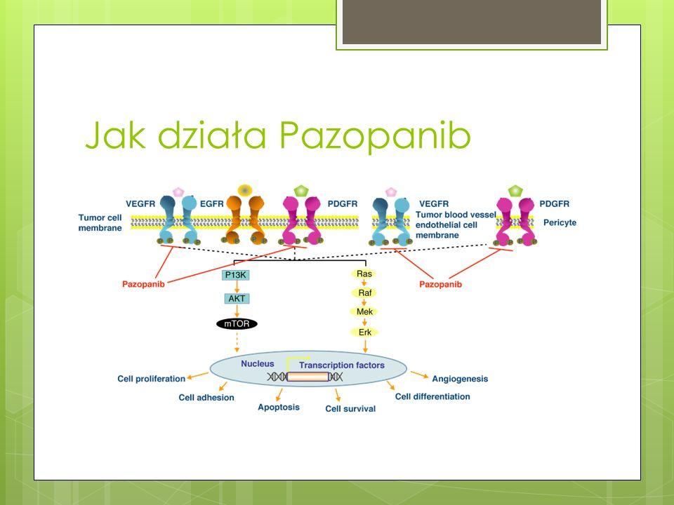 Jak działa Pazopanib