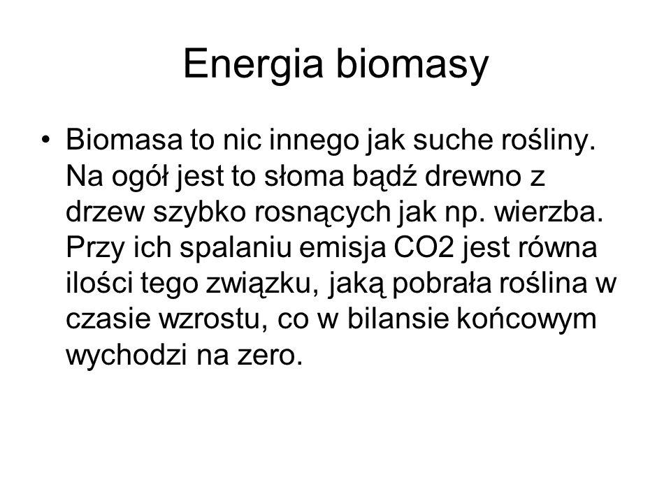 Energia biomasy Biomasa to nic innego jak suche rośliny. Na ogół jest to słoma bądź drewno z drzew szybko rosnących jak np. wierzba. Przy ich spalaniu