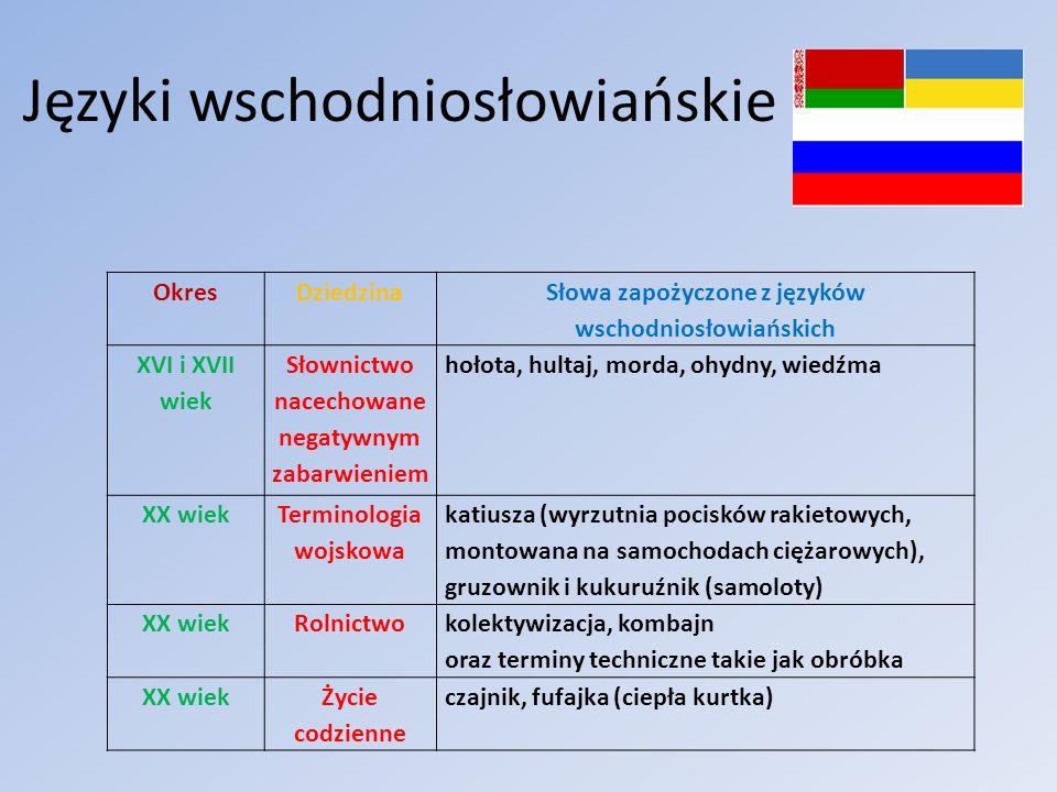 Języki wschodniosłowiańskie OkresDziedzina Słowa zapożyczone z języków wschodniosłowiańskich XVI i XVII wiek Słownictwo nacechowane negatywnym zabarwi