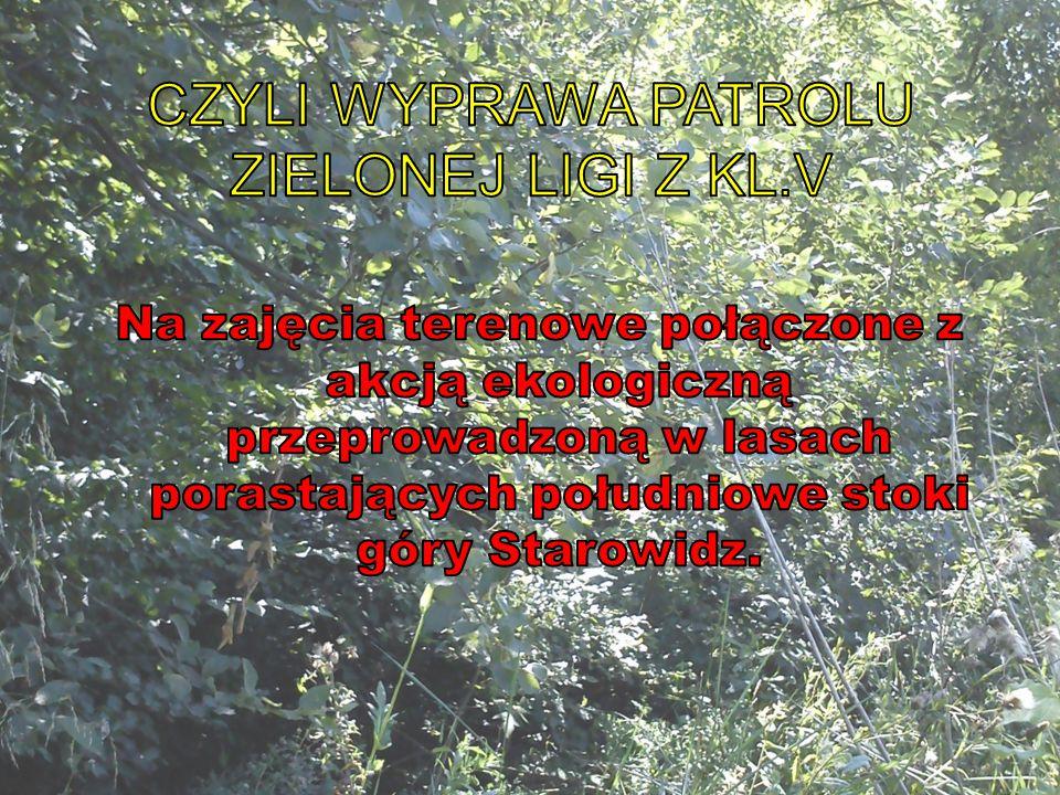 Sprawozdanie wykonali uczniowie kl.5 z Zespołu Szkół w Zembrzycach - Patrol Zielonej Ligi 2013r.