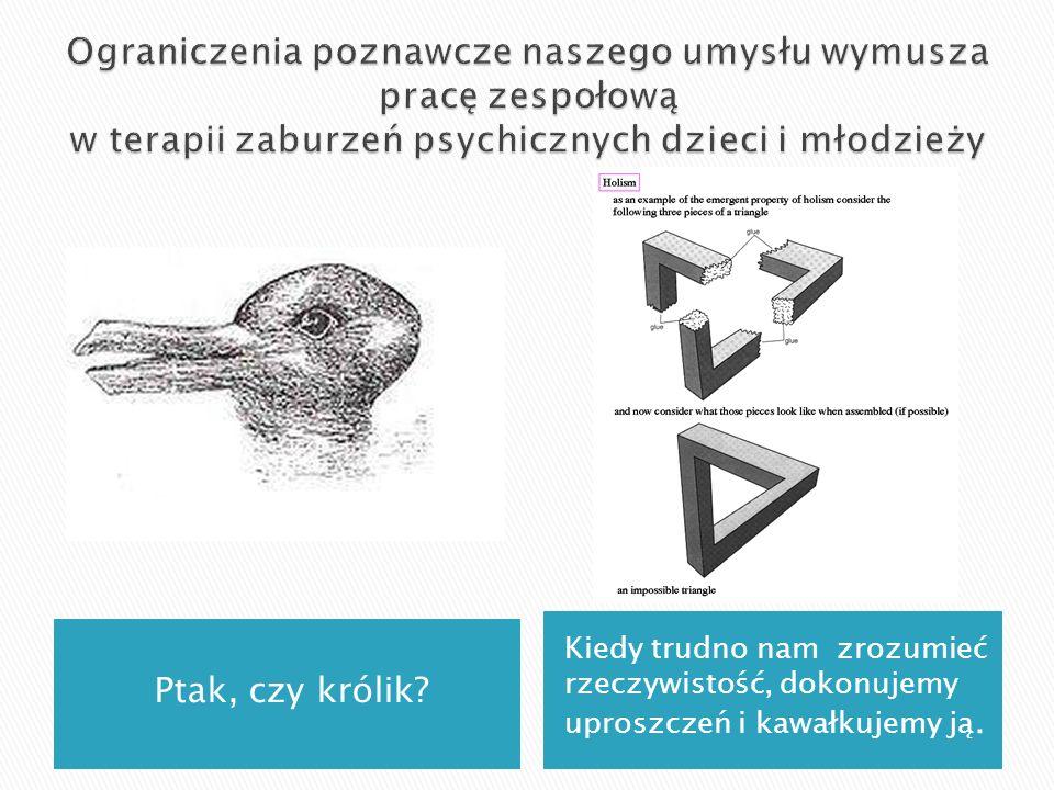 Ptak, czy królik? Kiedy trudno nam zrozumieć rzeczywistość, dokonujemy uproszczeń i kawałkujemy ją.