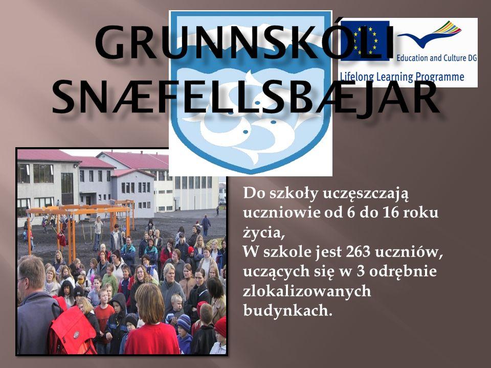 Do szkoły uczęszczają uczniowie od 6 do 16 roku życia, W szkole jest 263 uczniów, uczących się w 3 odrębnie zlokalizowanych budynkach.