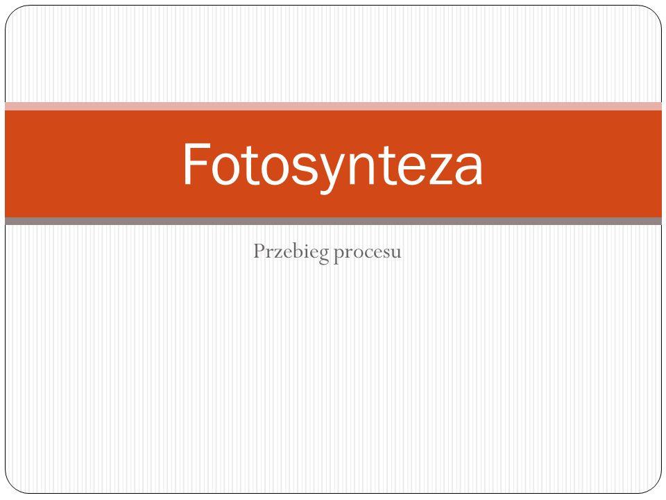 Przebieg procesu Fotosynteza