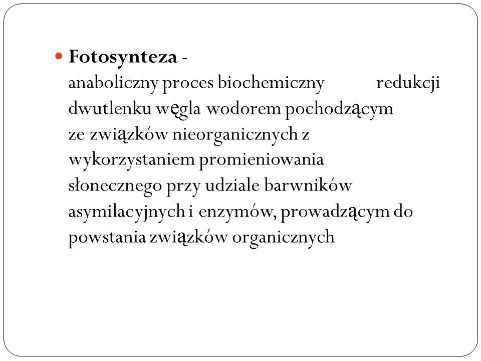 Fotosynteza - anaboliczny proces biochemiczny redukcji dwutlenku w ę gla wodorem pochodz ą cym ze zwi ą zków nieorganicznych z wykorzystaniem promieni