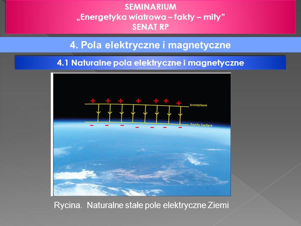 SEMINARIUM Energetyka wiatrowa – fakty – mity SENAT RP SEMINARIUM Energetyka wiatrowa – fakty – mity SENAT RP 4.1 Naturalne pola elektryczne i magnety