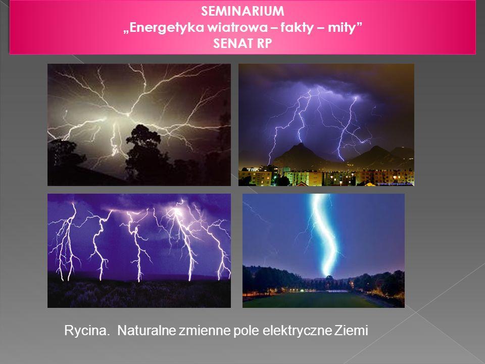 SEMINARIUM Energetyka wiatrowa – fakty – mity SENAT RP SEMINARIUM Energetyka wiatrowa – fakty – mity SENAT RP Rycina. Naturalne zmienne pole elektrycz