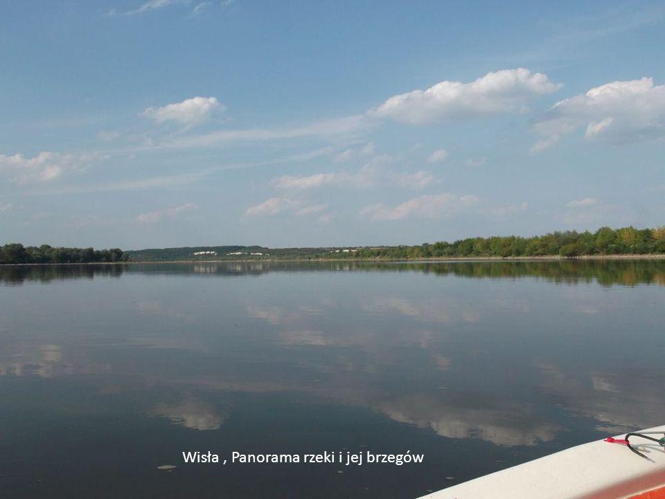 Wisła, Panorama rzeki i jej brzegów