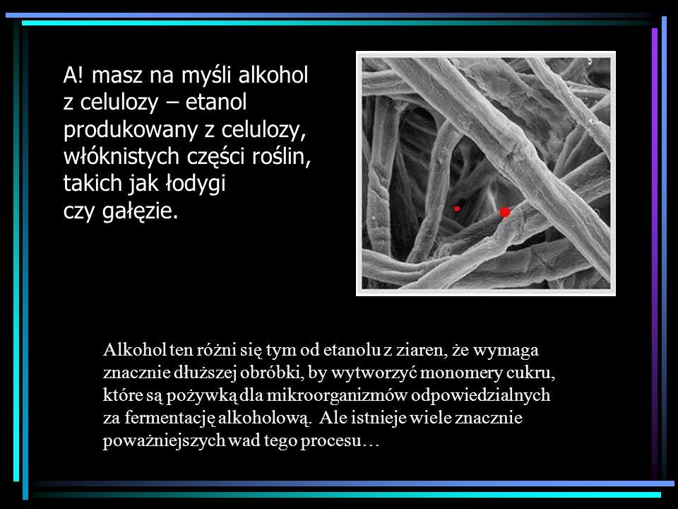 A! masz na myśli alkohol z celulozy – etanol produkowany z celulozy, włóknistych części roślin, takich jak łodygi czy gałęzie. Alkohol ten różni się t