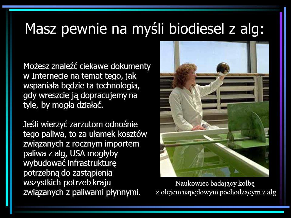 Masz pewnie na myśli biodiesel z alg: Możesz znaleźć ciekawe dokumenty w Internecie na temat tego, jak wspaniała będzie ta technologia, gdy wreszcie j