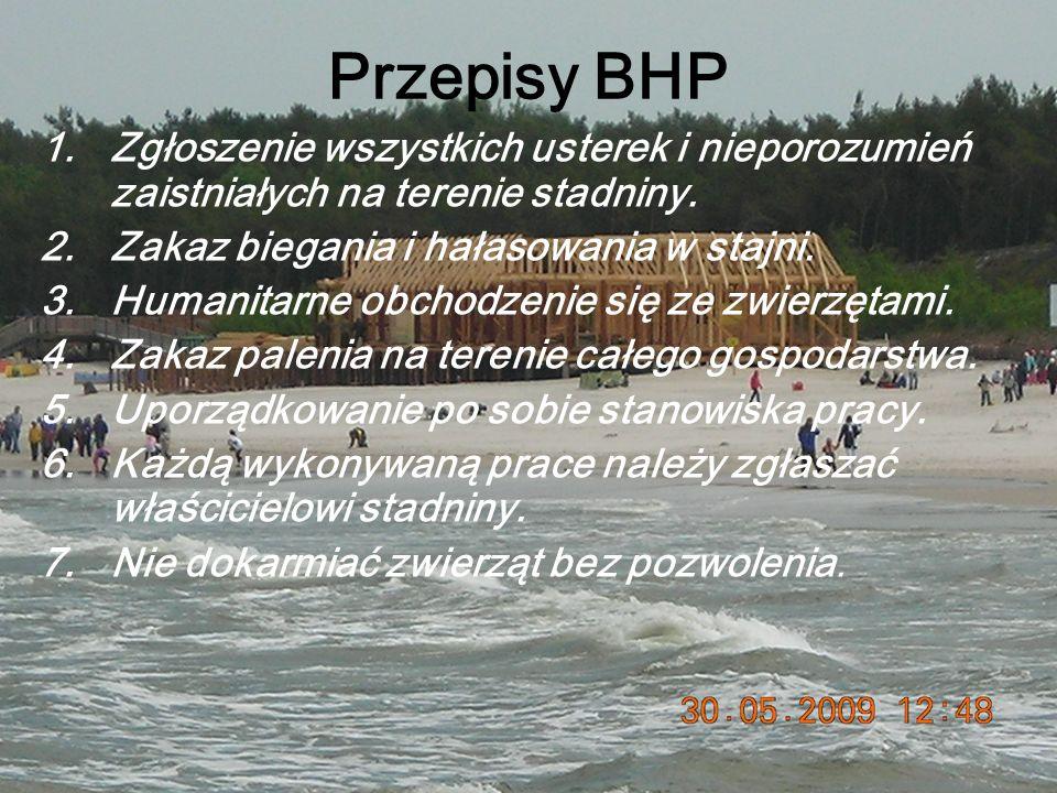 Przepisy BHP 1.Zgłoszenie wszystkich usterek i nieporozumień zaistniałych na terenie stadniny.