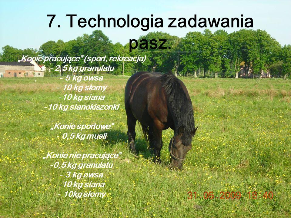 8.Zapoznanie się z wykonywanymi zabiegami zootechnicznymi, weterynaryjnymi,pielęgnacyjnymi.