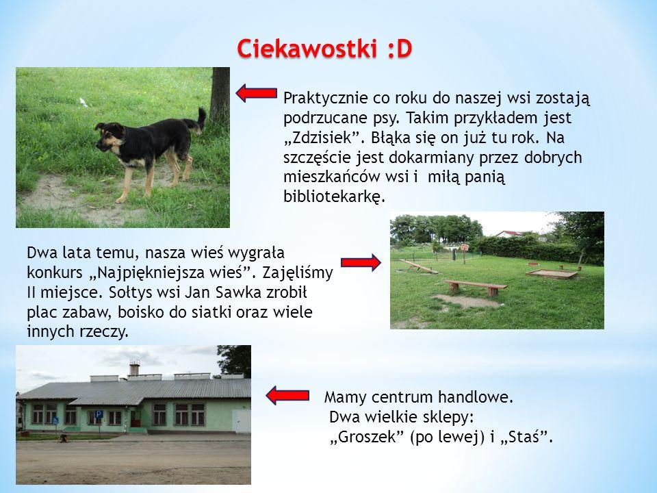 Ciekawostki :D Praktycznie co roku do naszej wsi zostają podrzucane psy. Takim przykładem jest Zdzisiek. Błąka się on już tu rok. Na szczęście jest do