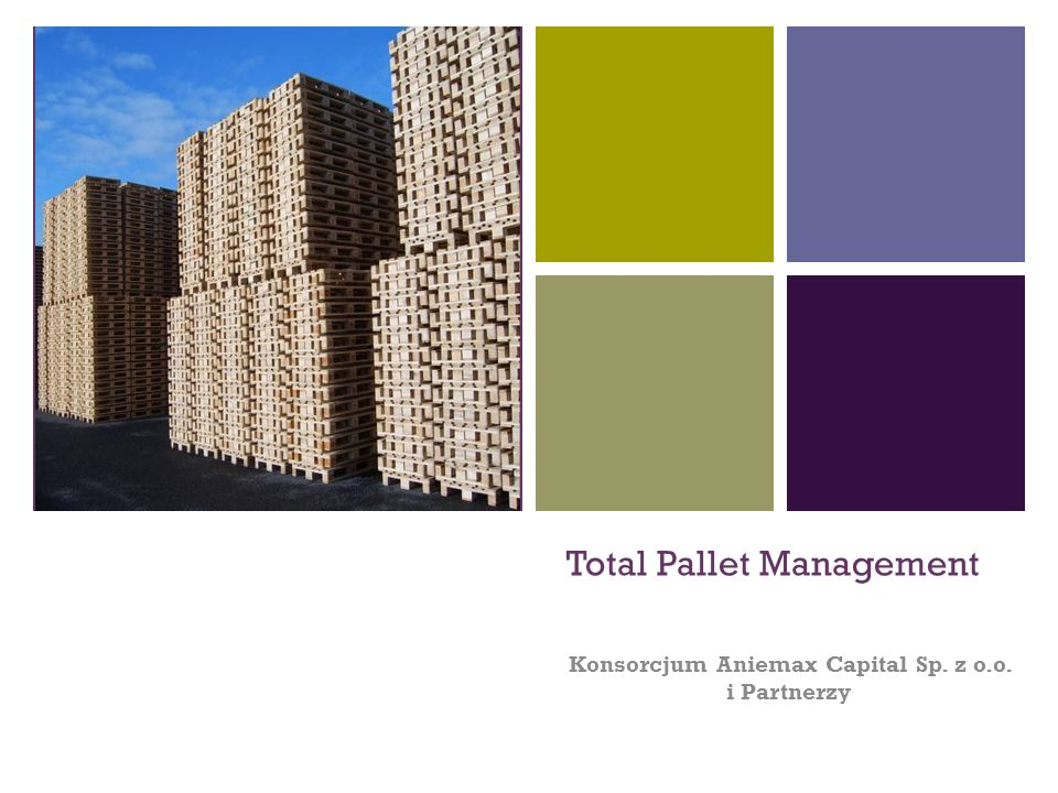 + Total Pallet Management Konsorcjum Aniemax Capital Sp. z o.o. i Partnerzy