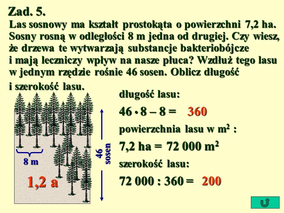 Zad. 5. Las sosnowy ma kształt prostokąta o powierzchni 7,2 ha. Sosny rosną w odległości 8 m jedna od drugiej. Czy wiesz, że drzewa te wytwarzają subs