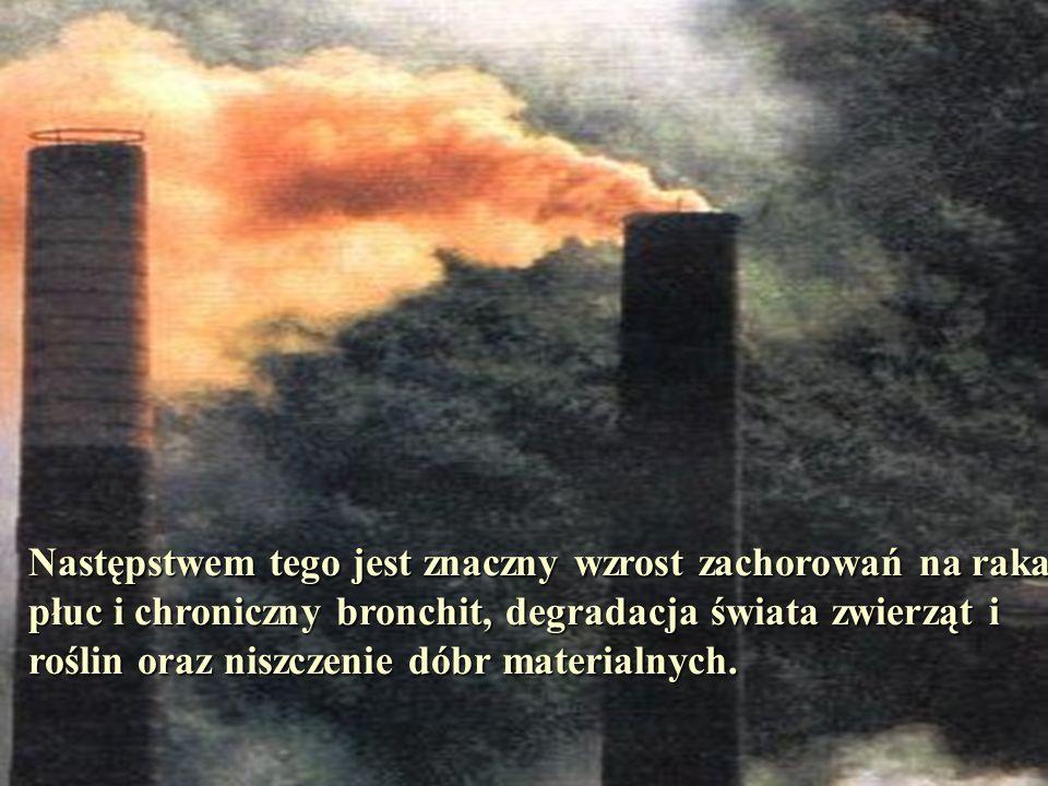 Zdrowe powietrze jest jednym z głównych warunków istnienia życia na Ziemi.