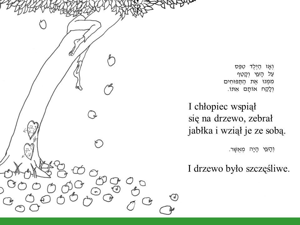 I chłopiec wspiął się na drzewo, zebrał jabłka i wziął je ze sobą. I drzewo było szczęśliwe.