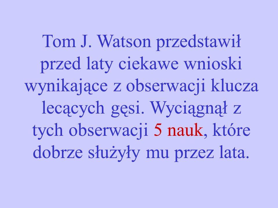 Tom J. Watson przedstawił przed laty ciekawe wnioski wynikające z obserwacji klucza lecących gęsi. Wyciągnął z tych obserwacji 5 nauk, które dobrze sł