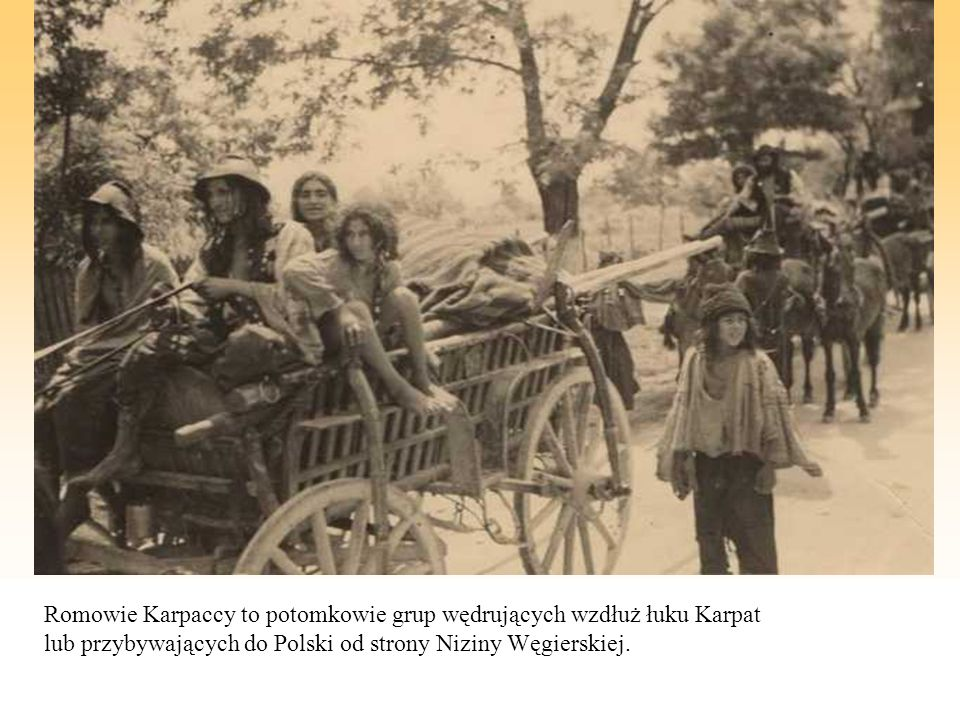 Romowie Karpaccy to potomkowie grup wędrujących wzdłuż łuku Karpat lub przybywających do Polski od strony Niziny Węgierskiej.