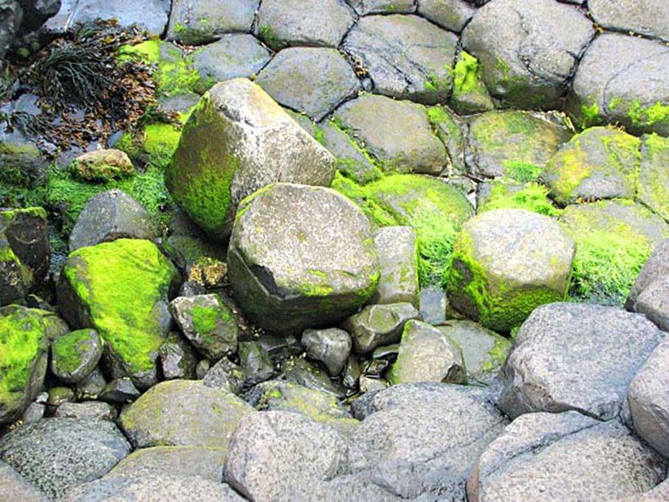 Wedle drugiej legendy Fionn zbudował sobie groblę, by przejść do Szkocji i stoczyć walkę na pięści z tamtejszym olbrzymem. Gdy zobaczył swego przeciwn