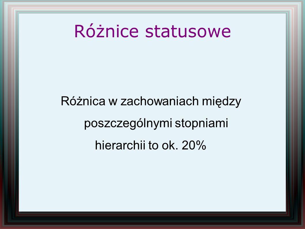 Różnice statusowe Różnica w zachowaniach między poszczególnymi stopniami hierarchii to ok. 20%
