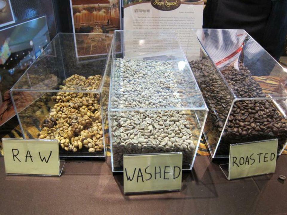 Nasiona gotowe do palenia