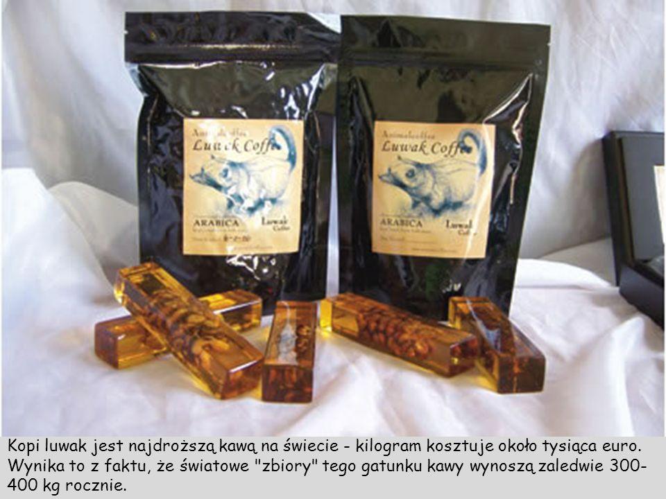 Dla niedowiarków kawa Luwak sprzedawana jest również nieoczyszczona (z instrukcją użycia)
