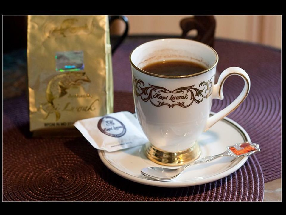 Prawdopodobnie nigdy nie dowiemy się, kto i kiedy wpadł na pomysł i miał ochotę, by zbierać i przetwa- rzać ziarna kawy wydłubane ze zwierzęcych odcho
